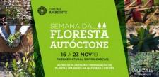 2019_ambiente_semana_floresta_autoctone_banner_site_755x372