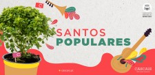2019_animacao_cultural_marchas_populares_banner_755x372_geral