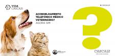 2021_vida_cascais_campanha_vet_banner_1000x500