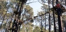 Pista de Arborismo -  ...