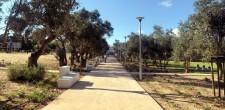 Parque Urbano da Quinta da Carreira