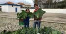 1500 kg de Legumes angariados  ...