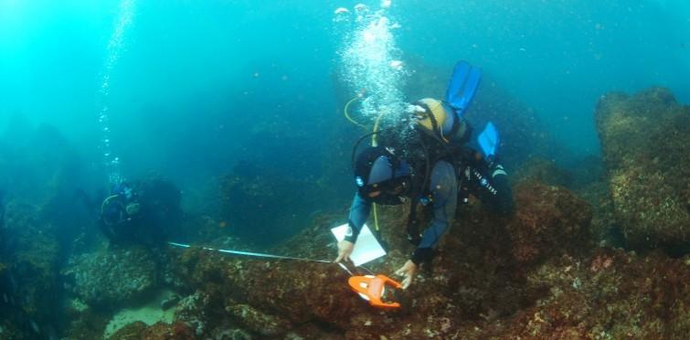 Medição de um canhão, época moderna | Cabo Raso