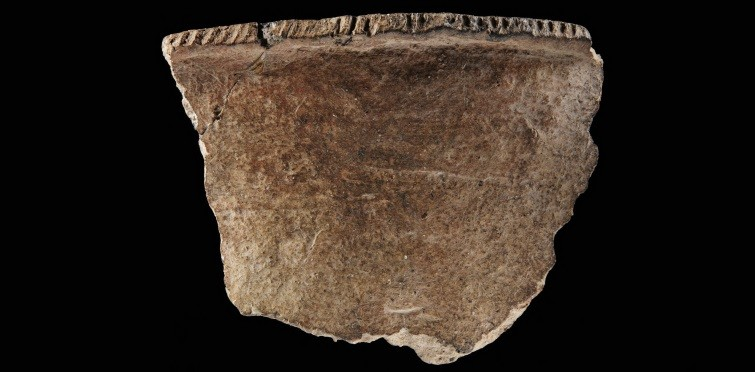 Fragmento de taça de cerâmica, com decoração denteada no bordo