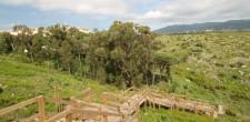 Espaços Verdes | Parque Penhas da Marmeleira