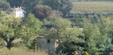 Terrenos agrícolas das Quintas da Samarra e dos Pesos | Caparide