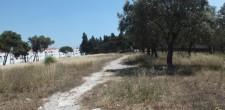 OP18 - Jardim-Parque no recinto da antiga feira de São Miguel das Encostas